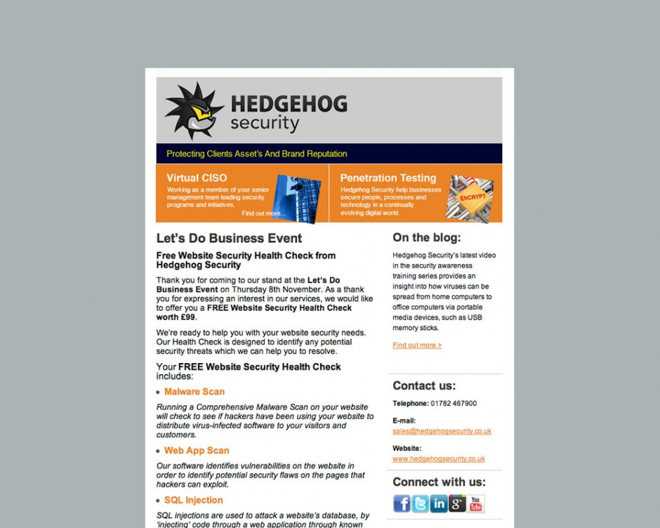 Email-marketing-for-Hedgehog-Security-LTD